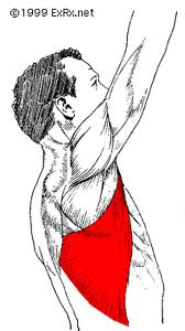 Making pull ups and burpees more shoulder and lower back